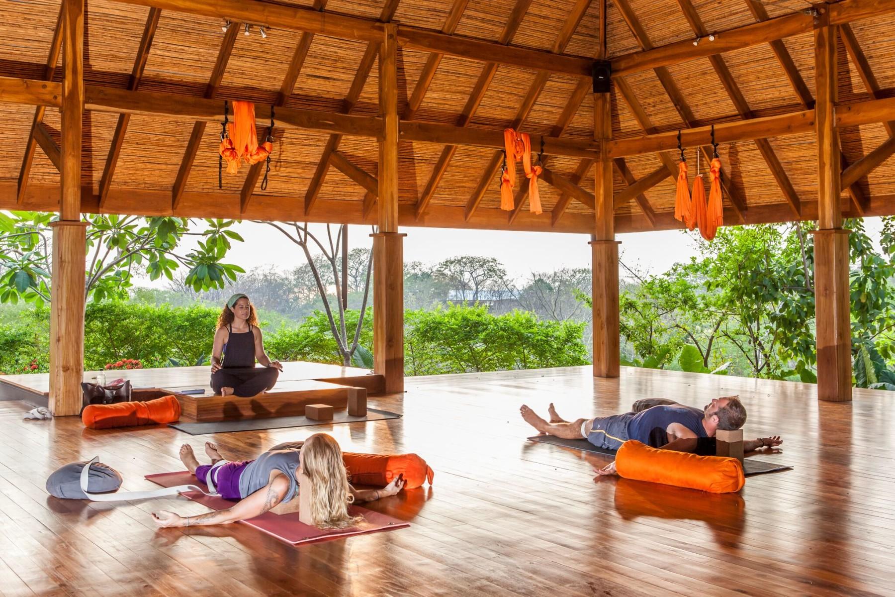 Yoga Teacher Retreat Training Amy Ippoliti Training